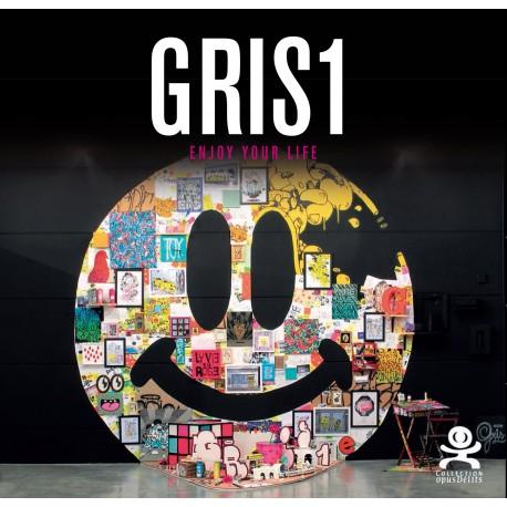 Opus Délits 71 Gris1
